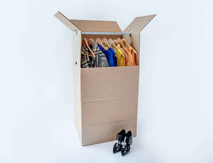 Wardrobe box including hanging rod